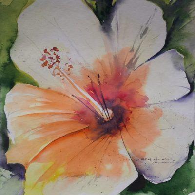 Blumenaquarelle