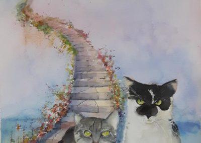 Katzenpaar