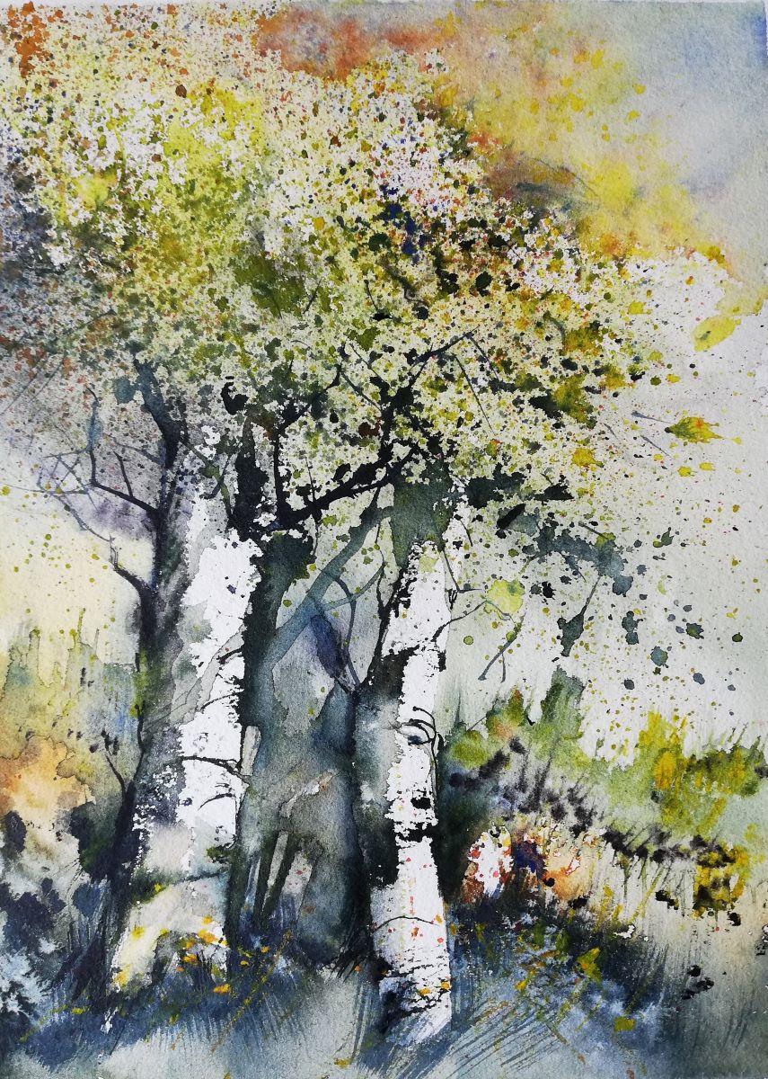 Zwei Birken malerisch