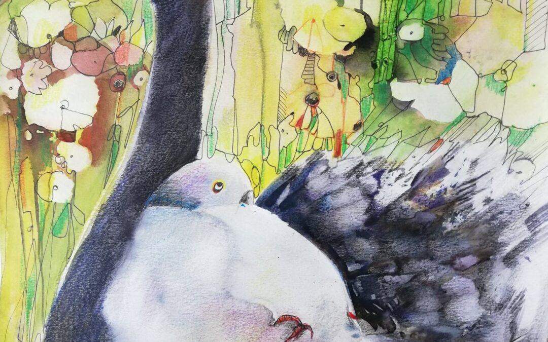 Tauben Challenge Nr 16