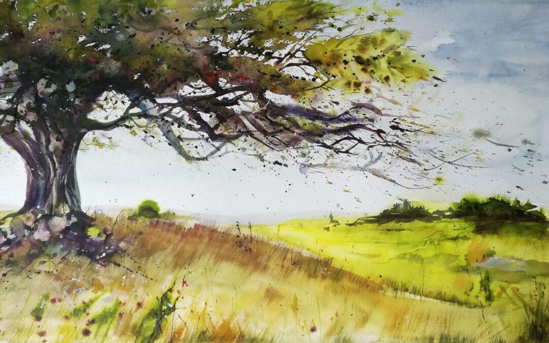Magischer Baum Dornbusch